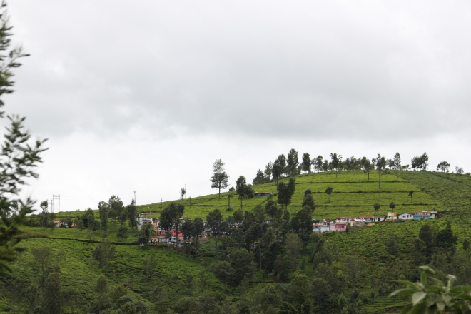 Ooty Toy Train_3